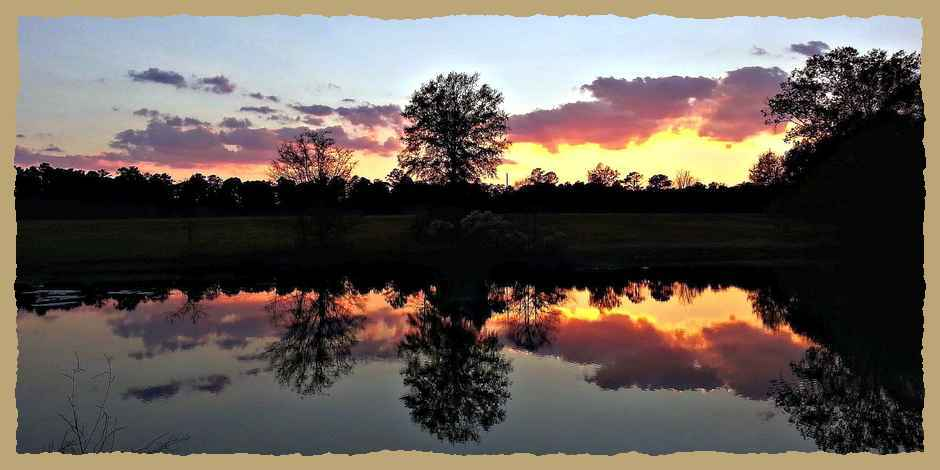 Morning Sky Reflection on surface of pond